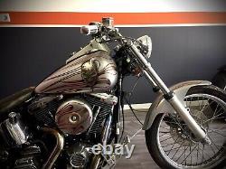 Kit Complet Carrosserie Harley Davidson Softail 1340 Evo Tete De Mort Flaming